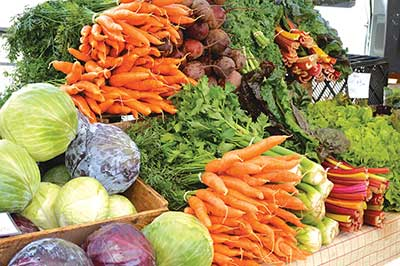 Variety of vegetables. Jean English photo