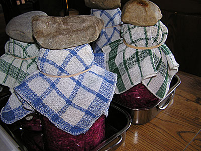 Rocks on sauerkraut jars