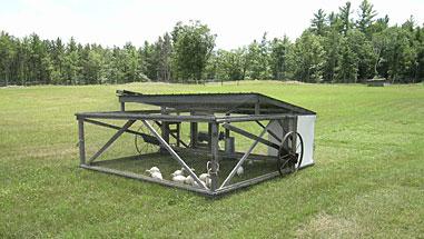 Belding Chicken Tractor