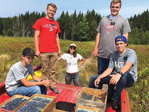 ReginaGrabrovac and four young missionary volunteers from the Church of the Latter Day Saints harvest blueberries.