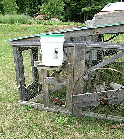 Belding Chicken Tractor 2