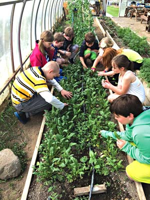 Walker School Model Garden Program