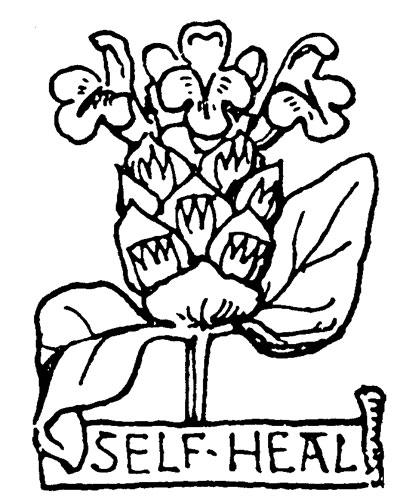Self-Heal