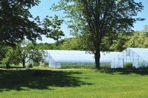 The three Rimol greenhouses