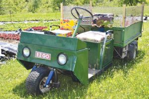 A golf cart with a dump body comes in handy for moving heavy materials around the farm.