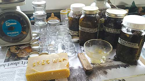 Gather a scale, infused oils, beeswax and clean containers, and you're ready to make salves. Bailey photo