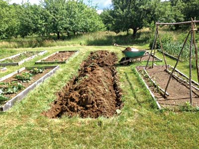 A raised bed made without a frame