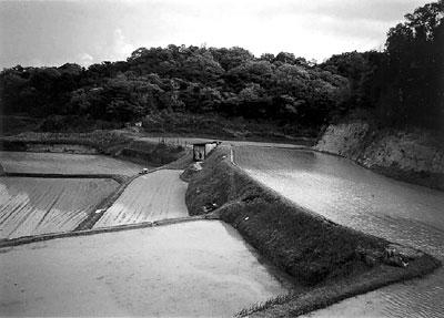 Satomaya region