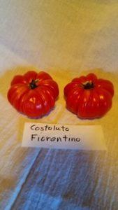 """""""Costoluto Fiorentino"""" tomato by Jumpers Hill Farm"""