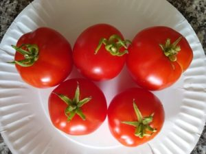 """""""patio""""tomato by Anne Warner"""