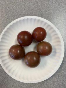 Black Cherry Tomatoes by Monroe Elementary School