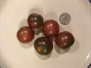 Black cherry tomato by Bridgette Bartlett