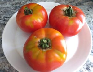 Celebrity Tomatoes by Hannah Ineson