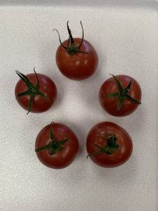 Chateau Rose Tomatoes by Troy Elementary School
