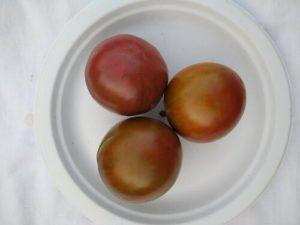 Cherokee Purple tomato by Anne Warner