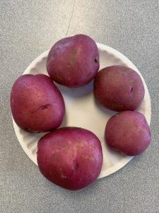 Dark Red Norland Potatoes by Monroe Elementary School