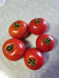 Defiant tomatoes by Valerie Jackson