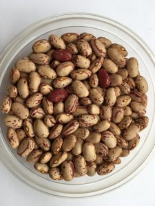 Dry bean - Early Shellout by Friends of Sam Birch