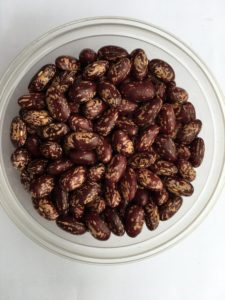 Dry bean- Johnson by Friends of Sam Birch
