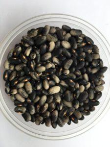 Dry bean - PXBT-PP-3-97B-00H by Friends of Sam Birch