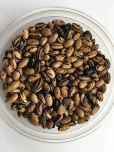 Dry bean - Peregion by Friends of Sam Birch
