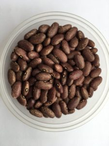Dry bean - Spring Valley Purple by Friends of Sam Birch