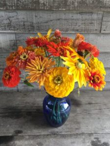 Flowers -annuals - sunset colors by Rosey Guest