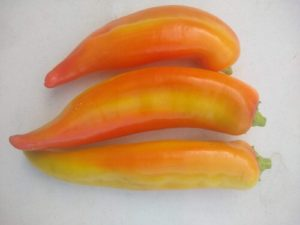 Goddess sweet pepper by Anne Warner