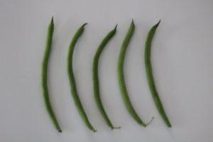Jade Bush Beans by Christian Robinson