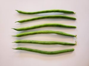 Jade Green Beans by Marsha and Michael Sloan
