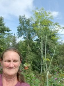 """Mammoth Dill ( how tall it is next to me at 5'3"""") by Valerie Jackson"""