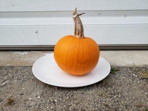 New England Pie Pumpkin by Jason Eisenhuth