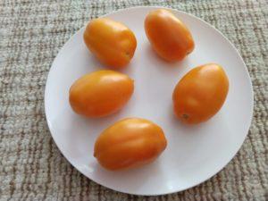 Orange Banana Tomato by David Frankel