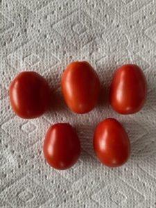 Principe Borghese Tomato by Hillary McAllister