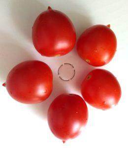 Principe Borghesi Tomato by Hannah Ineson