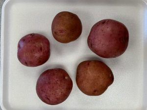Red Gold Potatoes by Troy Elementary School