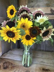 Sunflowers, mixed bouquet by Matthew Dubois