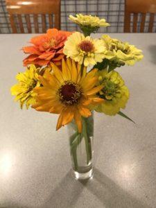 Zinna, mixed bouquet 1 by Matthew Dubois