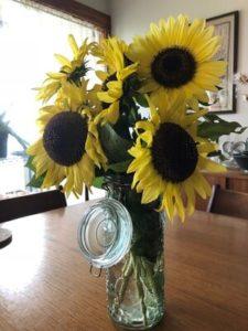 Lemon Leopold Italian Sunflowers by Amy Frances LeBlanc
