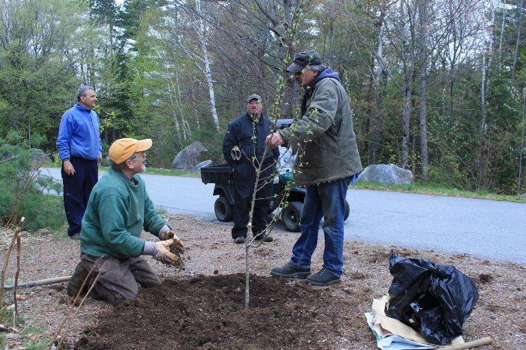 Smith+Hill+tree+planting+5.11.17