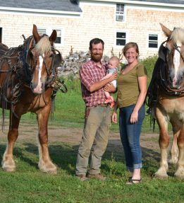 Justin, Harlan and Nell of Ironwood Farm in Albion